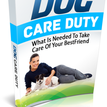 Dog training guide - How to make your dog