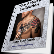 The Artist's Collection