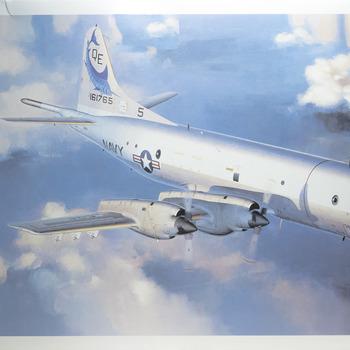 P-3C Model: How to build Hasegawa's P-3C Model