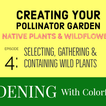 Creating Your Pollinator Garden -  Episode 4 Wildflowers & Native Plants