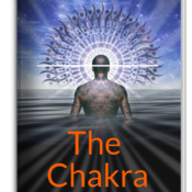 The Chakra Checklist