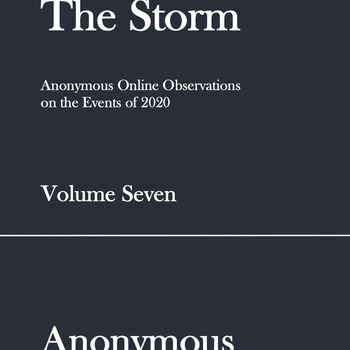 The Storm: Volume Seven