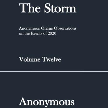 The Storm: Volume Twelve