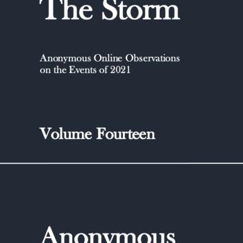 The Storm: Volume Fourteen