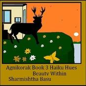 Agnikorak Book 3 Beauty within