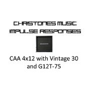 Custom Audio Amplifiers 4x12 with Vintage 30 and G12T-75 Impulse Responses for Two Notes Gear (tur and wave files)